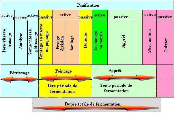 phases3.jpg